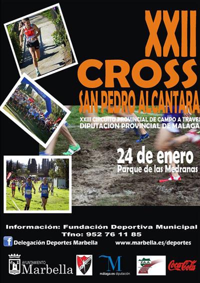 Cross San Pedro Alcántara